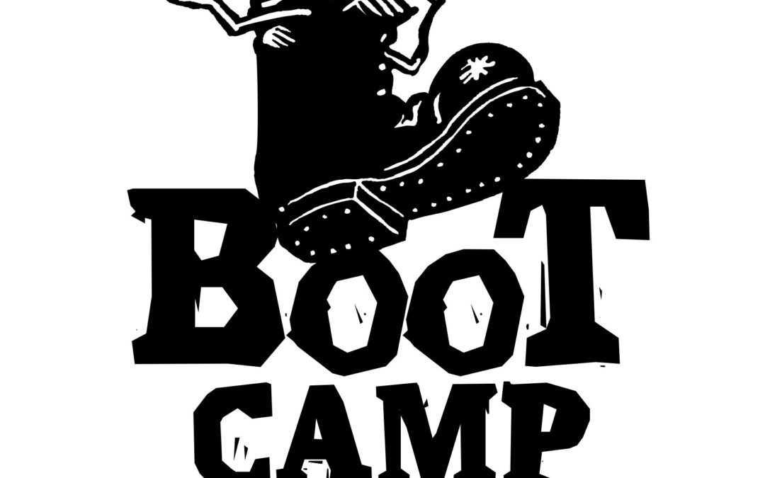 Starting Soon : team.i Bootcamps